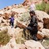 Hamad kan godt lide at klatre i klipperne. Her kan man finde urter til lækker te. Nogle af urterne har beduiner også brugt som medicin igennem århundreder. Foto: William Vest-Lillesøe