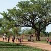 Joshua står op klokken 5.00 hver morgen. Det tager 50 minutter at gå til skolen. - Foto: Emmanuel Museruka