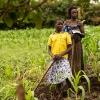 Når familien arbejder på andres marker tjener de 4000 shillings per dag. Det svarer til 10 danske kroner. - Foto: Emmanuel Museruka
