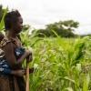 Nyiramberes mor har hendes lillebror på ryggen. Han er vandt til at sidde i slyngen. De rytmiske hakkebevægelser får ham til at falde i søvn. - Foto: Emmanuel Museruka