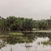 I regntiden bliver mange områder oversvømmet. - Foto: Andreas Beck