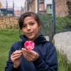 Langs hegnet rundt om skolen vokser blomster. Lucia elsker blomster. Hun kan ikke lade være med at plukke dem. – Foto: Andreas Beck