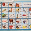 Der hænger også et lille billede af forskellige dyr. Dyrenes navne står både på engelsk og på arabisk. - Foto: William Vest-Lillesøe